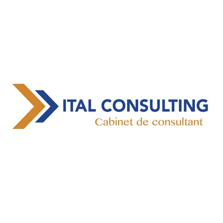 ital consulting